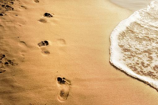 Wave「summer beach vacation」:スマホ壁紙(15)