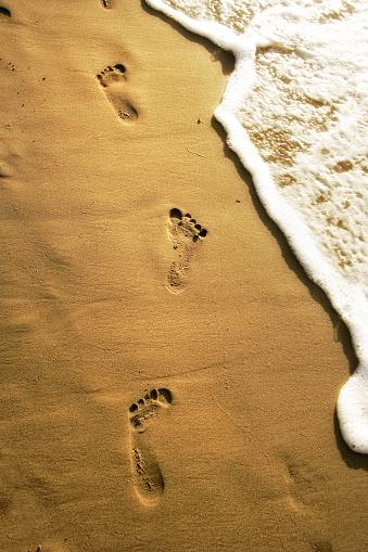 Wave「summer beach vacation」:スマホ壁紙(16)