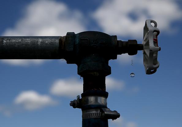スイセン「Residential Recycled Water Fill Stations Offer Water For Reuse On Lawns And Gardens」:写真・画像(18)[壁紙.com]