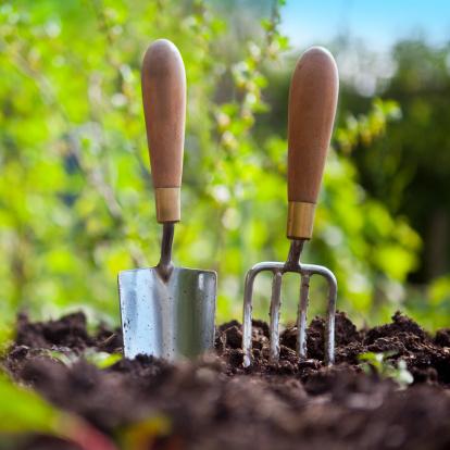 Gardening Fork「Garden Hand Tools」:スマホ壁紙(17)