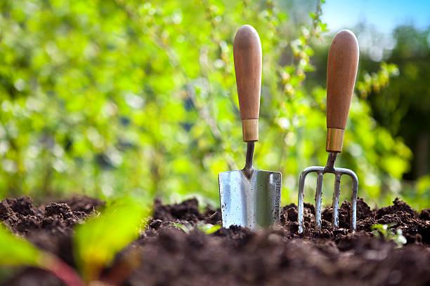 Garden Hand Tools:スマホ壁紙(壁紙.com)
