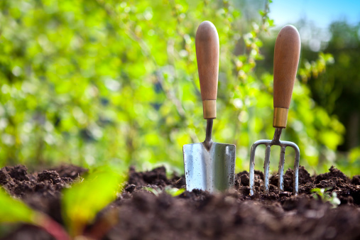 Vegetable Garden「Garden Hand Tools」:スマホ壁紙(4)