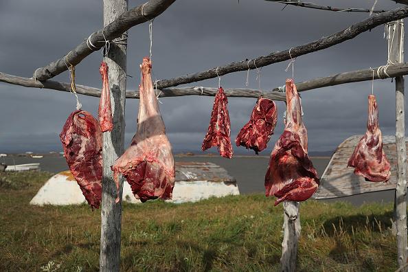 Hanging「Rising Sea Levels Threaten Remote Alaskan Village Of Kivalina」:写真・画像(18)[壁紙.com]
