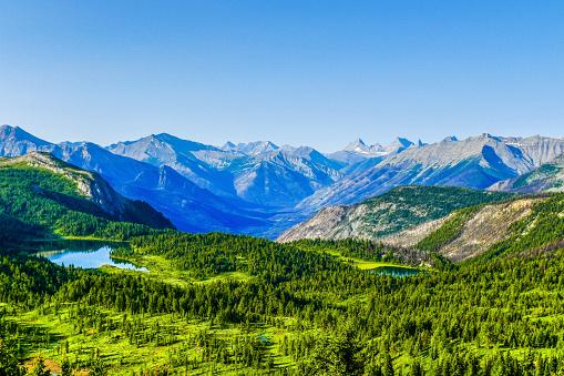 Mt Assiniboine「The Simpson River Valley, Sunshine Meadows, Banff National Park, Canada」:スマホ壁紙(19)