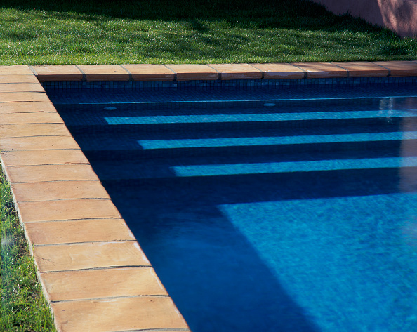 Grass Family「View of steps in a swimming pool on a sunny day」:写真・画像(16)[壁紙.com]