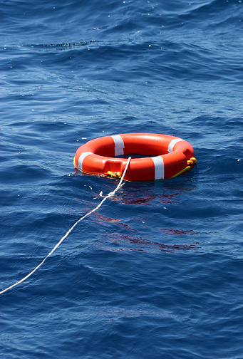Amalfi Coast「Lifesaver」:スマホ壁紙(2)