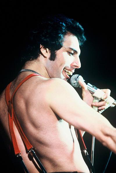 上半身「Queen in Concert」:写真・画像(15)[壁紙.com]