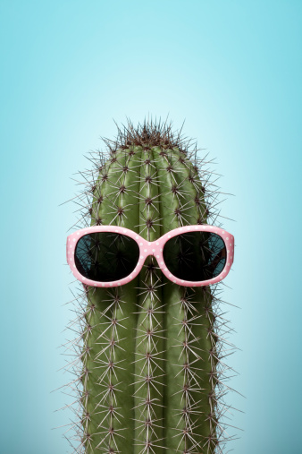 Cool Attitude「Cactus with pink sunglasses on blue」:スマホ壁紙(9)