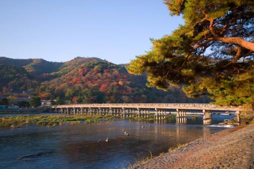 Arashiyama「Togetsu bridge at Arashiyma, Kyoto Prefecture, Honshu, Japan」:スマホ壁紙(14)