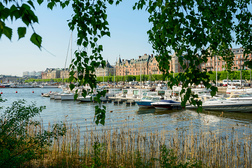 Boulevard「Central Stockholm in the summer, view of Strandvagen on Ostermalm with sailing boats, yachts on Lake Malaren, seen from Djurgarden」:スマホ壁紙(8)