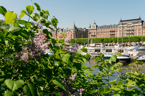 Boulevard「Central Stockholm in the summer, view of Strandvagen on Ostermalm with sailing boats, yachts on Lake Malaren, seen from Djurgarden」:スマホ壁紙(12)