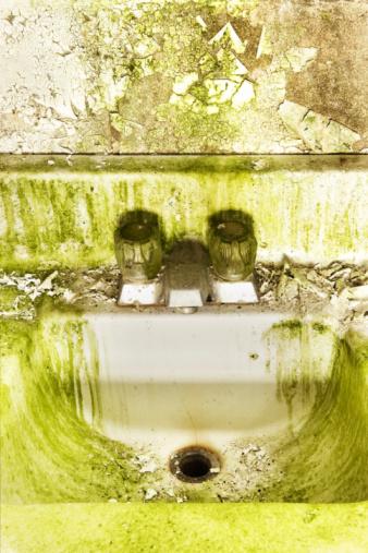 ぬるぬるした「グリーンのシンク」:スマホ壁紙(18)