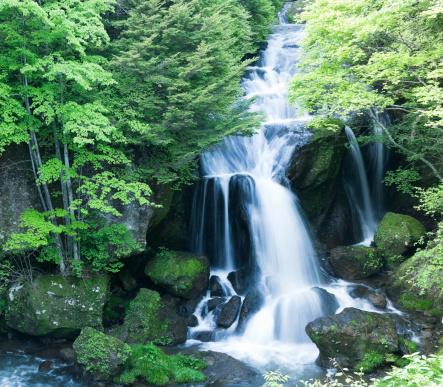 滝「滝」:スマホ壁紙(16)
