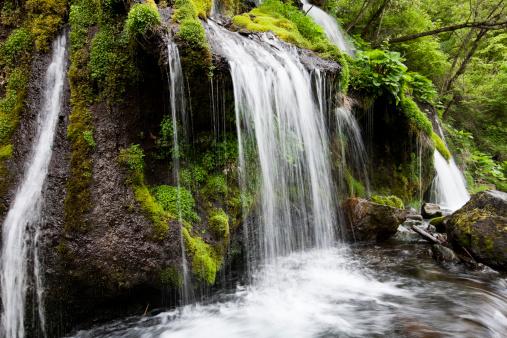 滝「滝」:スマホ壁紙(13)