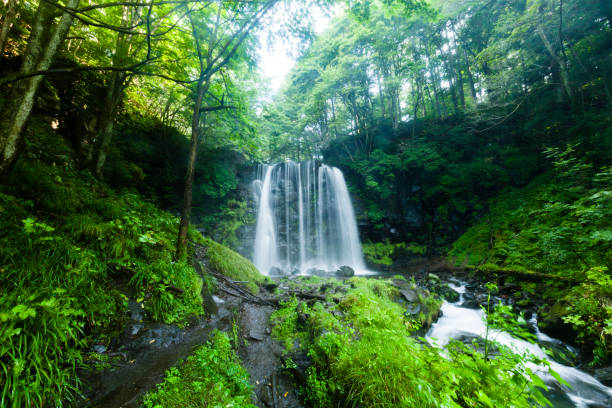 Waterfalls And Mountain Stream In The Forest:スマホ壁紙(壁紙.com)