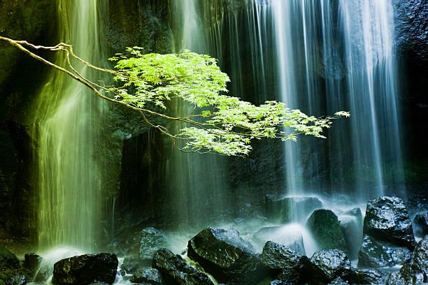 マイナスイオンが感じられる滝の風景のまとめ:2012年04月05日(壁紙.com)