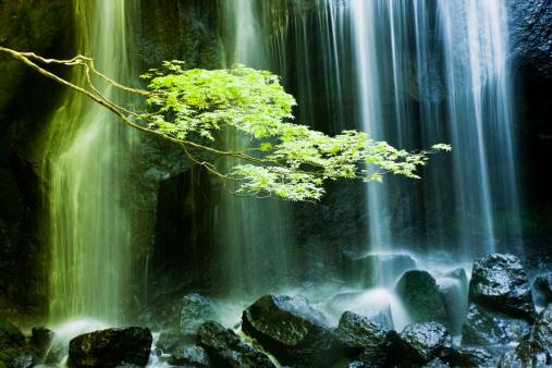 Japan「日本の滝」:スマホ壁紙(13)