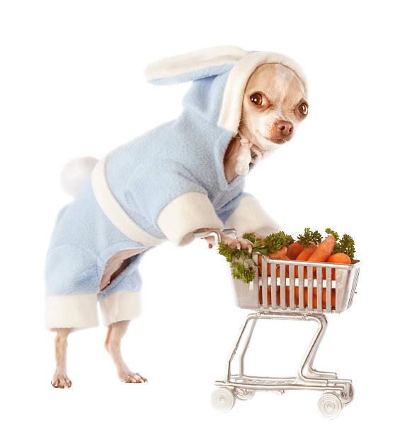 shopping carrots:スマホ壁紙(壁紙.com)