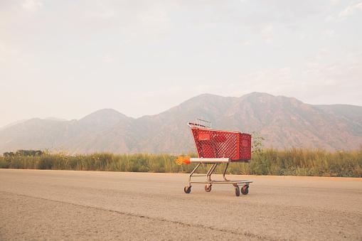 Offbeat「Shopping Cart with Rockets」:スマホ壁紙(19)