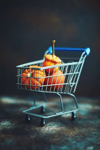Black Friday「Shopping Cart Filled with Miniature Pumpkins」:スマホ壁紙(17)