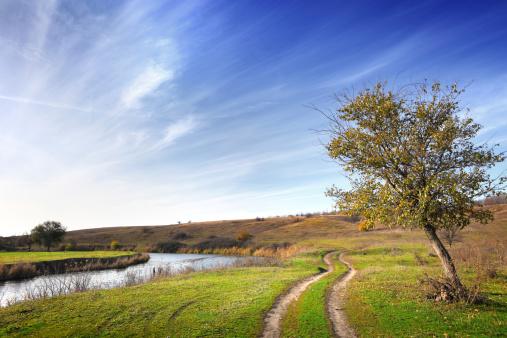 Country Road「Landscape」:スマホ壁紙(10)