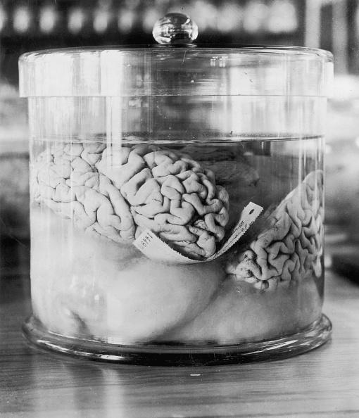 Criminal「Burglar's Brain」:写真・画像(13)[壁紙.com]