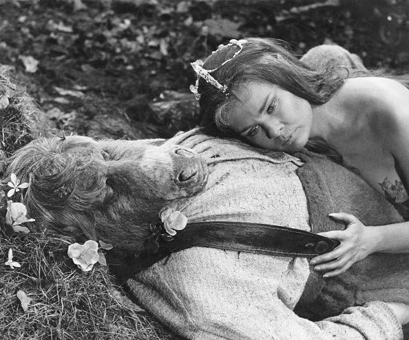 Peter Dench「A Midsummer Night's Dream」:写真・画像(6)[壁紙.com]