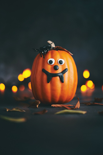 Jack-o'-lantern「Cute pumpkin character with spider and handmade fangs」:スマホ壁紙(18)