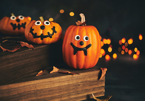 Fang「Cute pumpkin characters with handmade expressions and holiday lights」:スマホ壁紙(11)