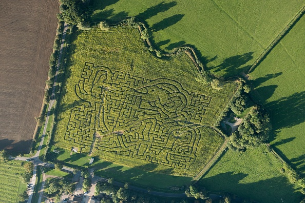 Rustic「Wistow Maize Maze」:写真・画像(12)[壁紙.com]