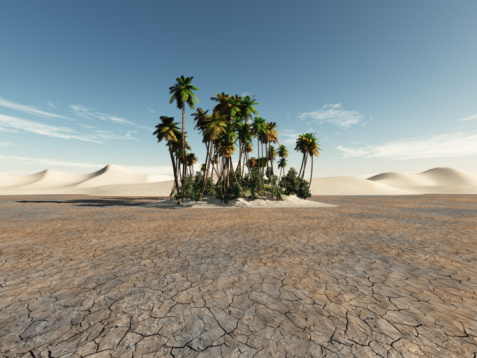 Arid Climate「Oasis with Palms in the Desert」:スマホ壁紙(18)