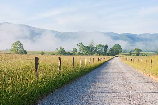 Great Smoky Mountains National Park「Morning in Cades Cove in the Smoky Mountains」:スマホ壁紙(8)