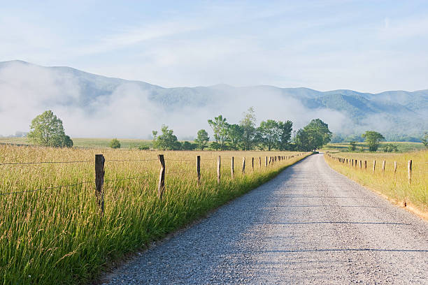 Morning in Cades Cove in the Smoky Mountains:スマホ壁紙(壁紙.com)