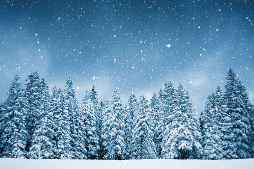 December「Pure Winter」:スマホ壁紙(3)