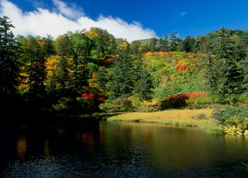 Kamikawa District - Ishikari「Daisetsu Highland and Takimi Pond, Kamikawa, Hokkaido, Japan」:スマホ壁紙(12)