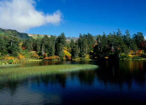 Kamikawa District - Ishikari「Daisetsu Highland and Midori Pond, Kamikawa, Hokkaido, Japan」:スマホ壁紙(13)