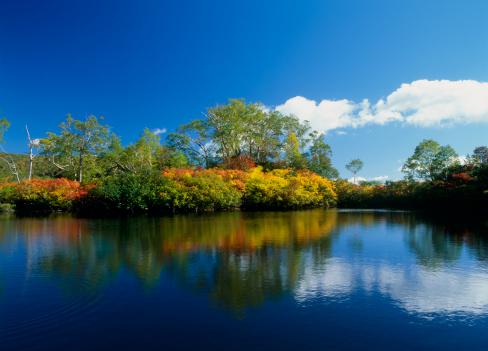 Kamikawa District - Ishikari「Daisetsu Highland and Ezo Pond, Kamikawa, Hokkaido, Japan」:スマホ壁紙(14)