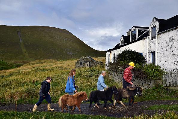 島「Foula - One Of The Remotest Permanently Inhabited Islands In Great Britain」:写真・画像(11)[壁紙.com]