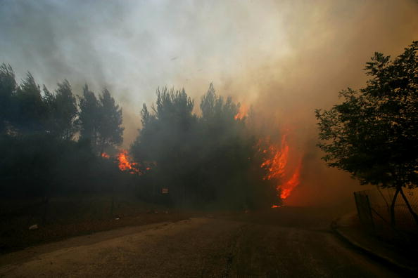 Greece「State of Emergency Declared As Wildfires Burn In Rural Athens」:写真・画像(18)[壁紙.com]