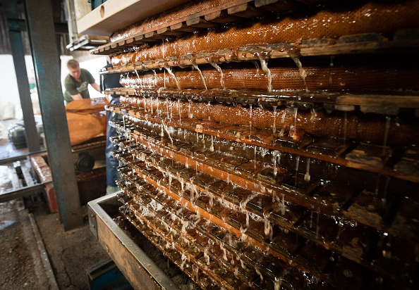 Finance and Economy「Cider Makers Expecting Bumper Apple Crop This Autumn」:写真・画像(9)[壁紙.com]