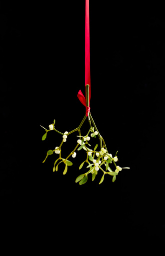Mistletoe「Christmas Mistletoe tied with red ribbon,」:スマホ壁紙(14)