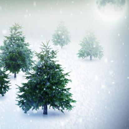 月「クリスマスマジック泊」:スマホ壁紙(2)