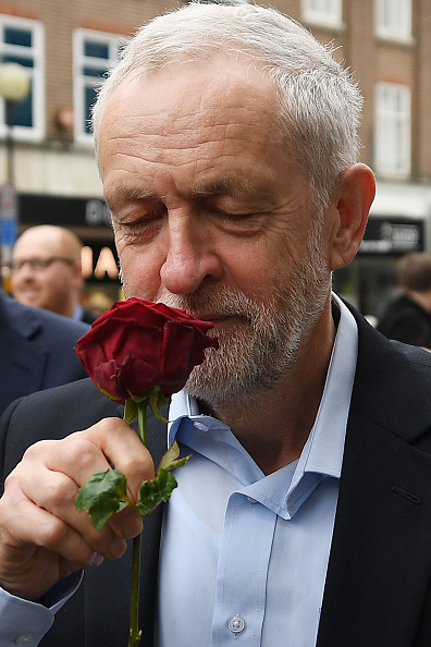 薔薇「Labour Leader Jeremy Corbyn Sets Out His Stall In Bedford」:写真・画像(17)[壁紙.com]