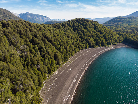 The Nature Conservancy「Lakeshore at Conguillio Lake in Conguillio National Park」:スマホ壁紙(6)