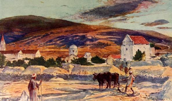 Working Animal「Cana Of Galilee」:写真・画像(15)[壁紙.com]
