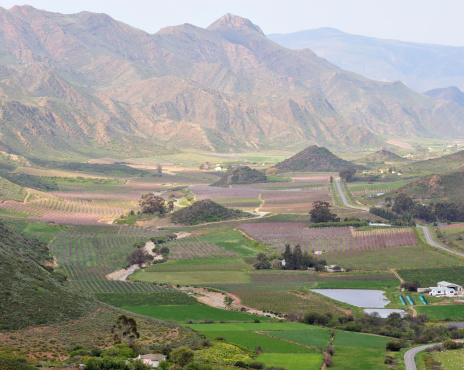 Koo Valley「Koo valley in the springtime, blossoms painting the landscape, Western Cape, South Africa」:スマホ壁紙(0)