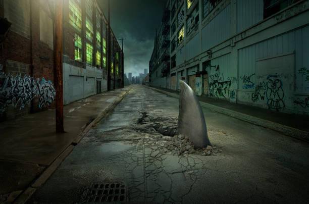 Shark fin swimming in dilapidated city street:スマホ壁紙(壁紙.com)