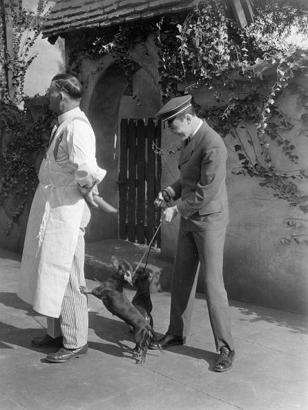 Pet Owner「Lucky Dog」:写真・画像(14)[壁紙.com]