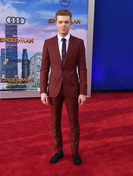 "Film Premiere「Premiere Of Columbia Pictures' ""Spider-Man: Homecoming"" - Arrivals」:写真・画像(19)[壁紙.com]"