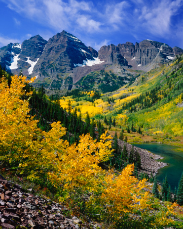 Aspen Tree「Maroon Bells With Autumn Aspen Trees」:スマホ壁紙(4)